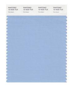 PANTONE SMART 15-4020X Color Swatch Card, Cerulean - House Paint - Amazon.com