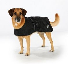 Bild på Hundtäcke Orleans Reflex/Fleece SVART 50 cm 50th, Dogs, Animals, Animales, Animaux, Pet Dogs, Doggies, Animal, Dog