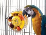 I'm always losing track of this page, so I am pinning it: best list I've found of what is and is not toxic to parrots.