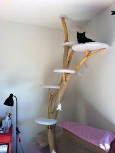 kratzbaum selber bauen 67 ideen und bauanleitungen katzen sachen. Black Bedroom Furniture Sets. Home Design Ideas