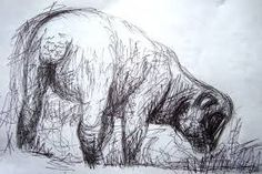 Image result for sheep drawings