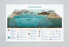 """Sehen Sie sich mein @Behance-Projekt an: """"Sea of data"""" https://www.behance.net/gallery/8041769/Sea-of-data"""