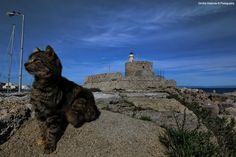 The Keeper of the lighthouse by Dimitris Koskinas, via 500px