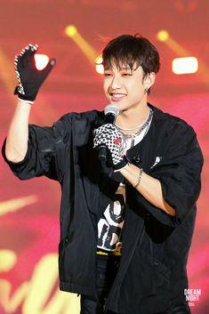 Dream Night, Chris Chan, Stray Kids Chan, Chubby Cheeks, My Little Baby, Lee Know, Mixtape, South Korean Boy Band, I Love Him