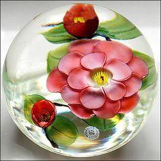 Daniel Salazar Lundberg Studio Lampwork Pink Camellia Art Glass Paperweight   eBay paper weight