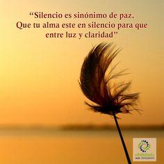 El silencio interior permite llenar tu alma de luz y claridad. Ambas o ninguna. El silencio se necesita para que brille el alma ya que permite que la armonía elimine toda esa energía negativa que entra a ti en ausencia del silencio. #VitalidaddelSer