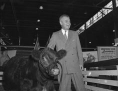 Throwback Thursday | Primer Minister John Diefenbaker talking politics with a cow at the 1957 CNE.  MG5-0-0-0-188-1   #tbt #CNE2014 #toronto #letsgototheex