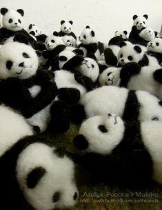 Needle felted pandas the cutest ,kawaii photo shoot of tiny toy pandas ever Needle Felted Animals, Felt Animals, Baby Animals, Cute Animals, Wet Felting, Needle Felting, Wooly Bully, Felting Tutorials, Cute Panda