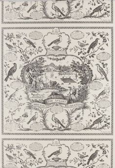 aviary toile wallpaper   Schumacher Toile Aviary Wallpaper   For the Birds There is one wall currently a blue/green paint