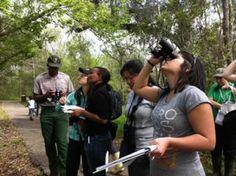 Citizens observing plants through binoculars.