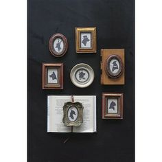 Set of 7 Photo Frames with Animal Silhouettes, all different