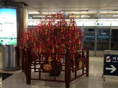 Hong Kong Wish Tree