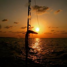 #dive #diving #tauchen #fishing #dhoni #afterdive #sunset #maldives #malediven #waves #island #indianocean #bluehorizon #bluehorizonmaldives #stardiversmaldives #clouds #nature #havefun #holydays #haveagoodtime #savetheocean #savenature #liveaboards #boat #safari #experience #seeyousoon#canonphotography #underwatercase #drops