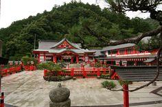 Home Sweet Home! Taikodani Inari Jinja Shrine #japan #shimane #tsuwano