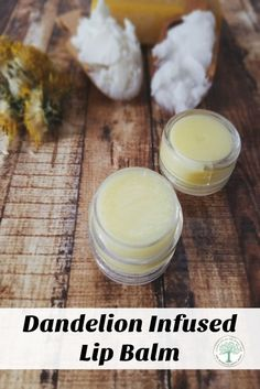 Get the best of Spring all year long with this wonderful dandelion infused lip balm! The Homesteading Hippy via /homesteadhippy/