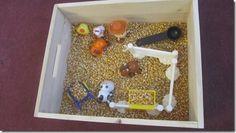 Farm sensory box with corn kernals