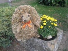 dekorace... ježek ze sena. Creation Crafts, Ikebana, Unique, Creative, Nature, How To Make, Diy, Outdoor, Decor