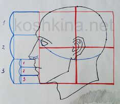 Japc Ylm Pcaj Gibson's media content and analytics Head Anatomy, Human Anatomy Drawing, Gesture Drawing, Anatomy Art, Face Drawing Reference, Drawing Tips, Art Reference, 3d Cnc, Sketch Design