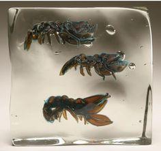 Alfredo Barbini Murano art glass aquarium aragosta, c.1950