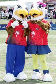Eddie & Ellie  #mascot #costume #birds