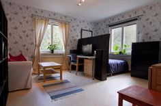fancy small studio apartment decorating with fireplace wooden floor