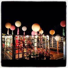Wedding balloons by night