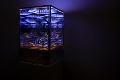 """""""Saturn Submerged"""" was designed by Gabriel Pulecio, a Colombian artist based in Brooklyn, New York. It comprises a cube-shaped glass showcase that contains unending patterns of light. These generate kaleidoscopic effects that appear to be practically incidental. Added to this is the illusion of endless depth."""