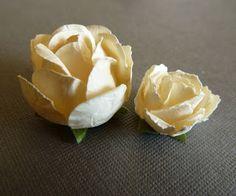 AngelicaS: Små rosor