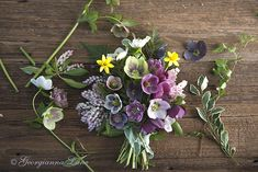Cutest bouquet ever!  Hellebores by Georgianna Lane