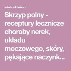 Skrzyp polny - receptury lecznicze choroby nerek, układu moczowego, skóry, pękające naczynka, oczyszczające i odtruwające kuracje