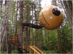 awsome treehouse