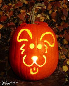 dog pumpkin, i wish I could carve this perfect ha