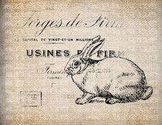 Antique Illustration French Lapin Rabbit Digital Download for Papercrafts, Transfer, Pillows, etc Burlap No. 9179