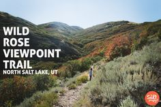 Wild Rose Viewpoint Trail | Adventurin' | The Salt Project | Things to do in Utah with kids
