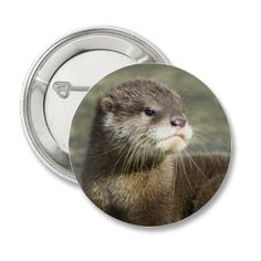 Cute #otter #button #badge