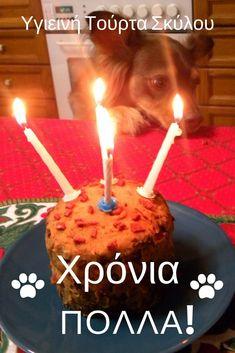Για να γιορτάσουμε τα 4α γενέθλια του σκύλου μας, του έφτιαξα αυτή την υγιεινή τούρτα, με κολολύθα, φυστικοβούτυρο, εξαιρετικά παρθένο ελαιόλαδο, γιαούρτι στραγγιστό, μέλι και μια σπέσιαλ λιχουδιά από μοσχάρι και κυνηγι. #Υγιεινόφαγητόσκύλου #Τούρτα κύλου #κέικσκύλου #σκυλοτροφή #φαγητόσκύλου Homemade Dog Food, Food Videos, Birthday Candles, Dog Food Recipes, Homemade Dog Treats
