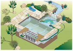 piscine biologique - Google zoeken