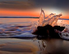 tips for water reflections, abstracts, splashes, puddles and more