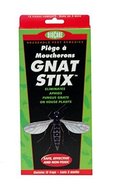Kids' Bendable Sculpting Sticks - Springstar BioCare Gnat Stix  12 Pack -- You can get additional details at the image link.