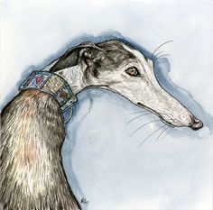 A Little Cheeky  Galgo Greyhound    Size: 8 x 8 inch  With Mount: 12 by 12 inch