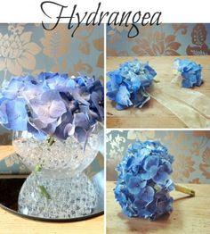 Flower School – Summer Seasonal Flowers with Campbell's Flowers - Hydrangea