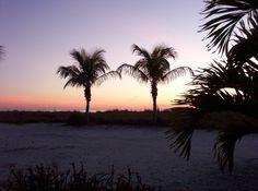 Palm Island, FL