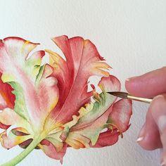 Watercolorist: @chuykova #waterblog #color #акварель #art #paint #aquarelle…