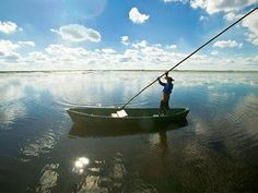 boat-esteros-del-ibera_85213_600x450.jpg (600×450)