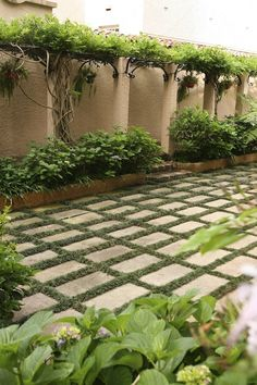 Mini mondo between rectangular pavers makes the floor of this courtyard the main decorative feature.