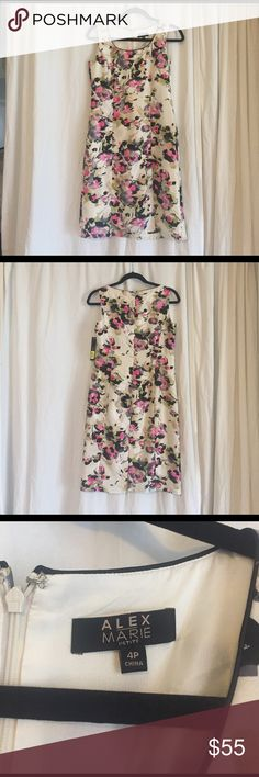 NWT Alex Marie floral sheath dress. Never worn pretty, floral, lined sheath dress.  Size 4.  I can't find any flaws except there is no belt.  I can't remember what it looked like but ant thin belt would work. Alex Marie Dresses