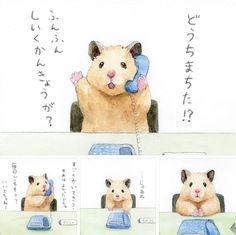 Kawaii Drawings, Cute Drawings, Japanese Hamster, Cute Hamsters, Gift Cake, Mini Canvas, Japanese Artists, Chinchilla, Training Your Dog