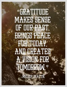 """""""Gratitude makes sense of our past, brings peace for today, and creates a vision for tomorrow."""""""