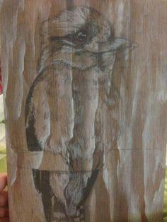 Kookaburra. Pencil and acrylic on plywood 2013