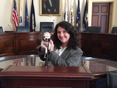 #stoppuppymills Harley is on Capitol Hill ready to fight for those poor pups who are still in puppy mills!  Thank you, Harley! You are are true hero!